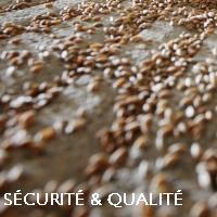 FR securite qualite
